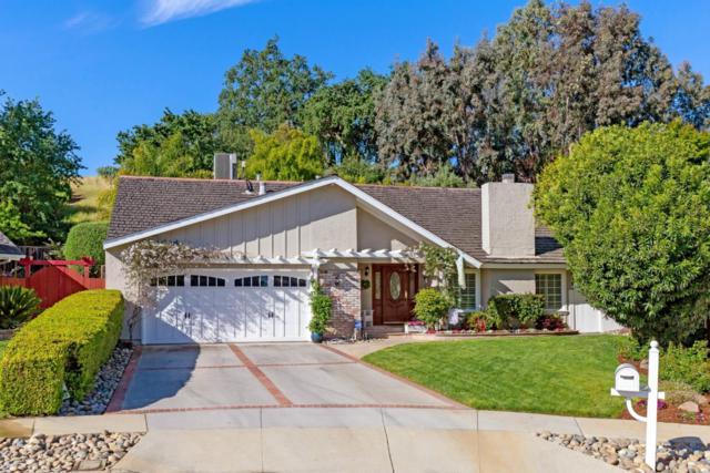 6281 Tweedholm Ct, San Jose, CA 95120 (#ML81743420) :: The Warfel Gardin Group