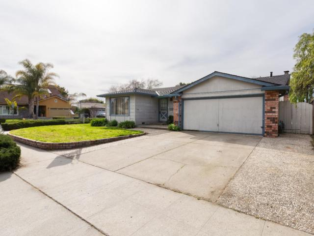 382 Bangor Ave, San Jose, CA 95123 (#ML81743513) :: The Kulda Real Estate Group