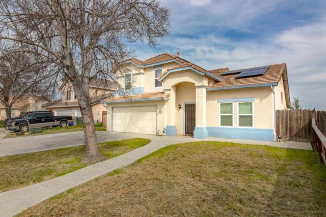 1442 Pintail Cir, Los Banos, CA 93635 (#ML81743575) :: The Kulda Real Estate Group