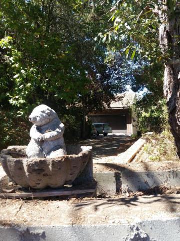 177 Barrett Dr, La Selva Beach, CA 95076 (#ML81743923) :: The Goss Real Estate Group, Keller Williams Bay Area Estates