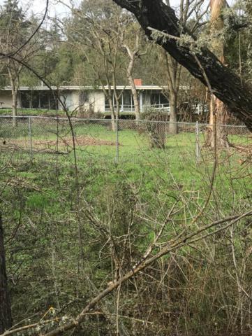 2106 Old Page Mill Rd, Los Altos Hills, CA 94022 (#ML81743950) :: Strock Real Estate