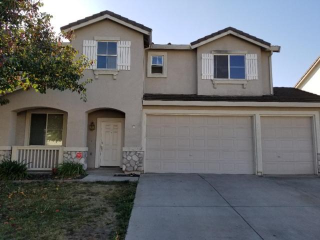 3410 Dewey Ct, Stockton, CA 95212 (#ML81744199) :: Strock Real Estate