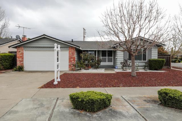 4492 Piper Dr, San Jose, CA 95129 (#ML81744208) :: Keller Williams - The Rose Group