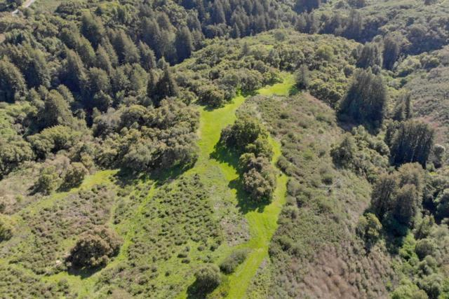0 Mount Madonna Road / Hecker Pass, Watsonville, CA 95076 (#ML81745915) :: The Realty Society