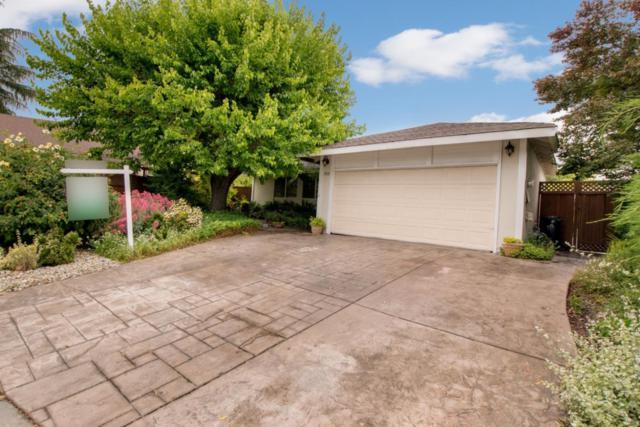 383 Vale Dr, San Jose, CA 95123 (#ML81746596) :: The Warfel Gardin Group