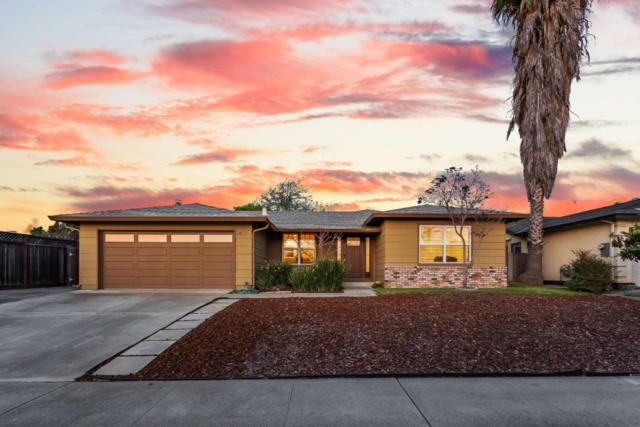 2920 S White Rd, San Jose, CA 95148 (#ML81746989) :: Brett Jennings Real Estate Experts