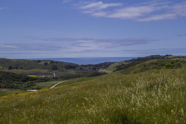 145 Bear Gulch Rd, San Gregorio, CA 94074 (#ML81747088) :: Strock Real Estate