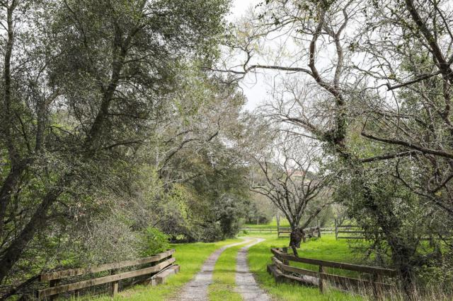 13830 Page Mill Rd, Los Altos Hills, CA 94022 (#ML81747400) :: The Kulda Real Estate Group