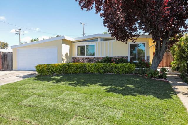 961 Las Palmas Dr, Santa Clara, CA 95051 (#ML81747438) :: Julie Davis Sells Homes