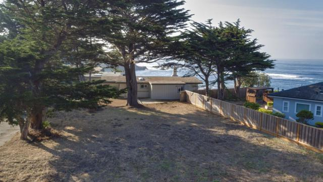 0 Reef Point Rd, Moss Beach, CA 94038 (#ML81747465) :: The Kulda Real Estate Group
