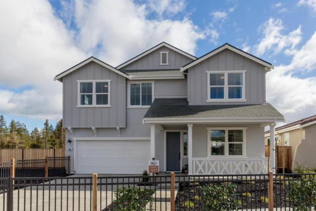 271 Copperleaf Ln, San Juan Bautista, CA 95045 (#ML81747528) :: Brett Jennings Real Estate Experts