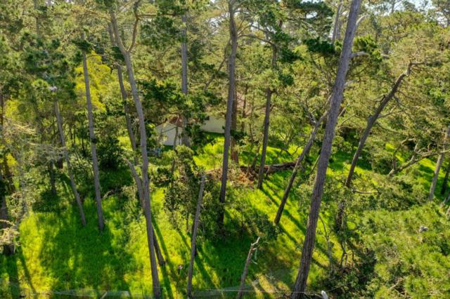 24744 Dolores, Carmel, CA 93923 (#ML81747543) :: The Kulda Real Estate Group