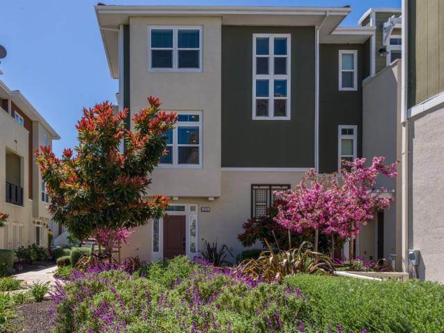 2826 Alvarado Ave, San Mateo, CA 94403 (#ML81747633) :: The Realty Society