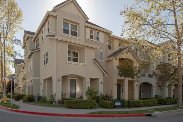 917 Kestral Way, San Jose, CA 95133 (#ML81747780) :: Brett Jennings Real Estate Experts