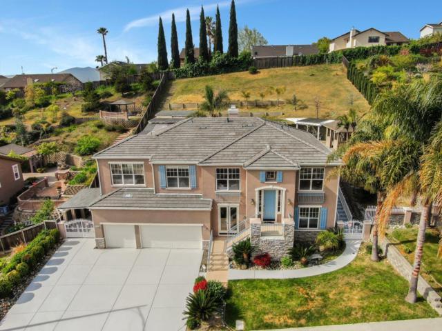 1570 Calco Creek Dr, San Jose, CA 95127 (#ML81747849) :: Julie Davis Sells Homes