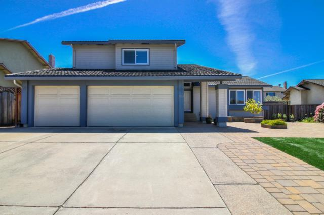 3028 Silver Est, San Jose, CA 95135 (#ML81747874) :: The Realty Society