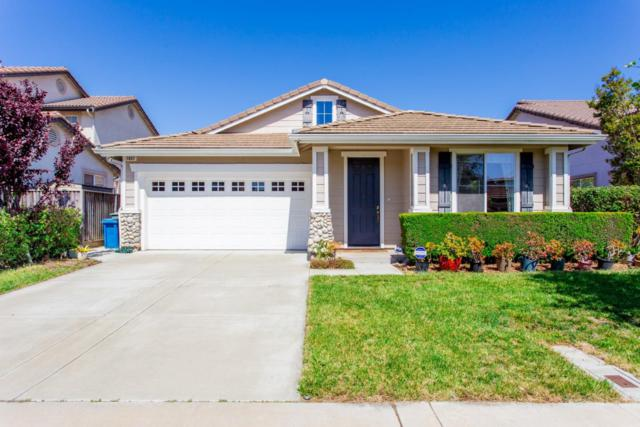 1037 Stone St, Union City, CA 94587 (#ML81748078) :: Live Play Silicon Valley