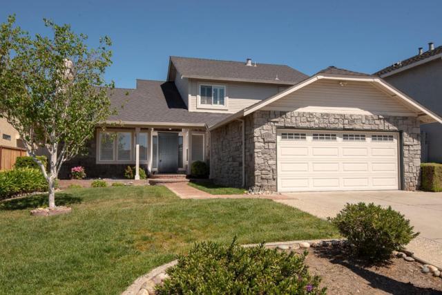 4432 Desin Dr, San Jose, CA 95118 (#ML81748089) :: The Goss Real Estate Group, Keller Williams Bay Area Estates