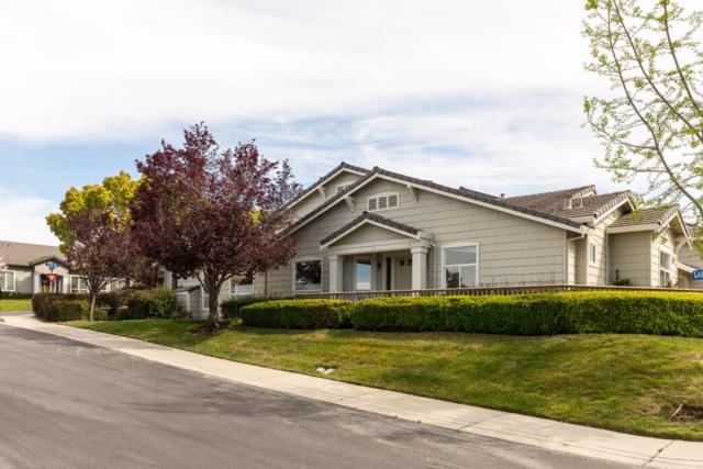 8752 Mccarty Ranch Dr, San Jose, CA 95135 (#ML81748106) :: The Realty Society