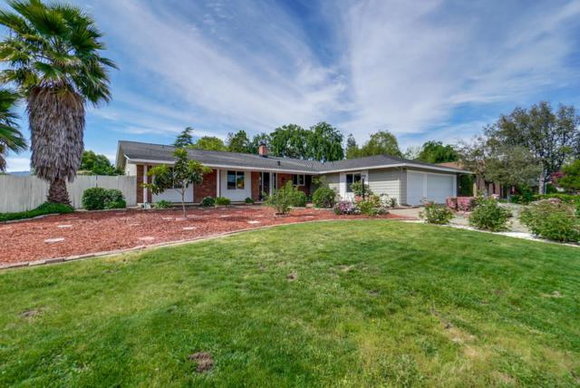 12575 Scully Ave, Saratoga, CA 95070 (#ML81748191) :: The Goss Real Estate Group, Keller Williams Bay Area Estates