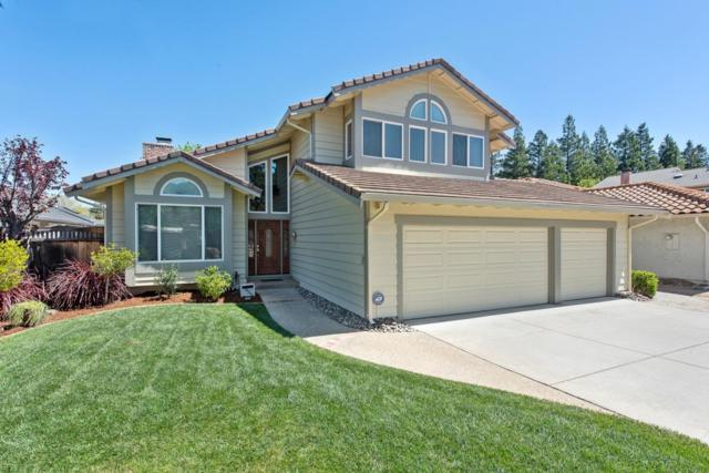 7184 Silver Lode Ln, San Jose, CA 95120 (#ML81748238) :: The Realty Society