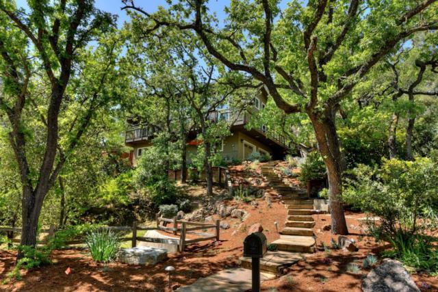 129 Smith Creek Dr, Los Gatos, CA 95030 (#ML81748279) :: Julie Davis Sells Homes