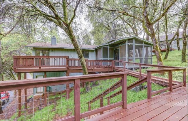 17867 Minnow Way, Penn Valley, CA 95946 (#ML81748391) :: Strock Real Estate