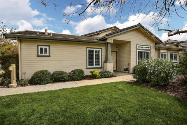 8610 Vineyard Ridge Pl, San Jose, CA 95135 (#ML81748450) :: RE/MAX Real Estate Services