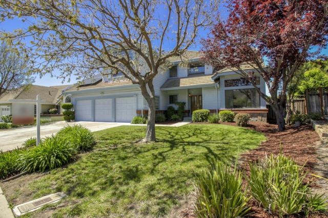 48908 Tulare Dr, Fremont, CA 94539 (#ML81748584) :: Live Play Silicon Valley
