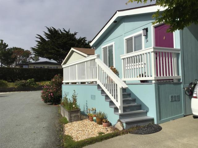 14 Seashell Cir 14, Half Moon Bay, CA 94019 (#ML81749203) :: Strock Real Estate