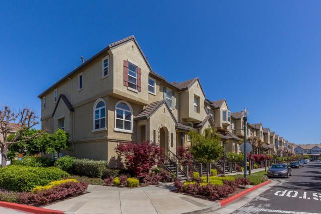 1101 Yates Way, San Mateo, CA 94403 (#ML81749894) :: Strock Real Estate