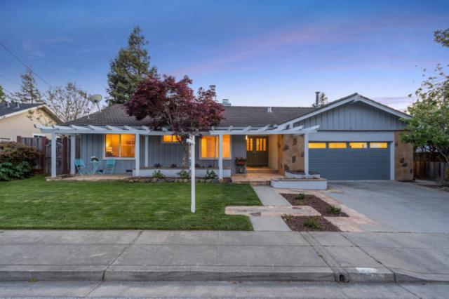 64 Valley View Ct, San Mateo, CA 94402 (#ML81750113) :: Strock Real Estate