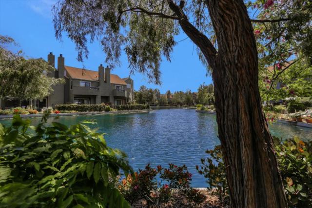 969 Shoreline Dr, San Mateo, CA 94404 (#ML81750450) :: Strock Real Estate
