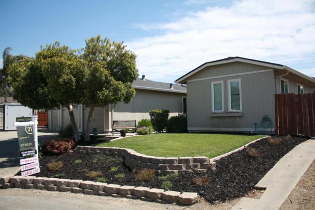 35 Carol Anns Ct, Hollister, CA 95023 (#ML81750572) :: Strock Real Estate