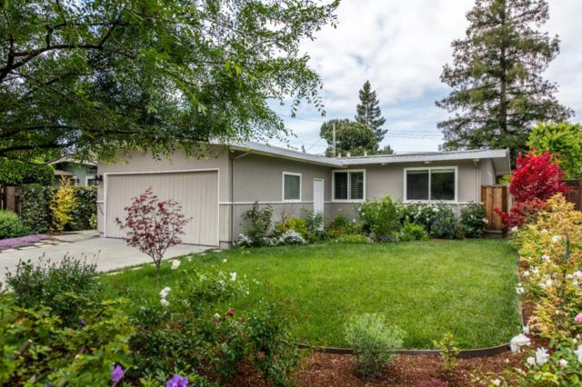 2469 Marjorie Ct, Mountain View, CA 94043 (#ML81750627) :: Strock Real Estate