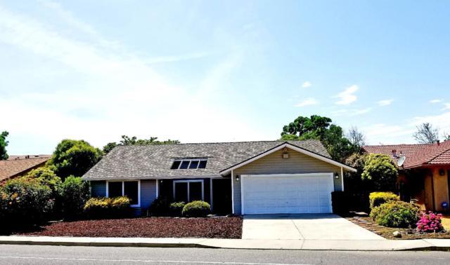 1133 Balsam Dr, Newman, CA 95360 (#ML81750681) :: Strock Real Estate