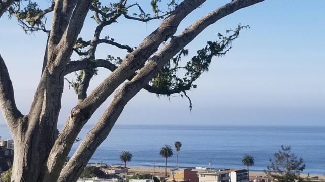 129 Sea Terrace Way, Aptos, CA 95003 (#ML81750741) :: Brett Jennings Real Estate Experts