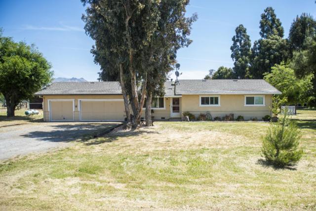 60 Pan Tempo Way, Hollister, CA 95023 (#ML81750863) :: The Warfel Gardin Group