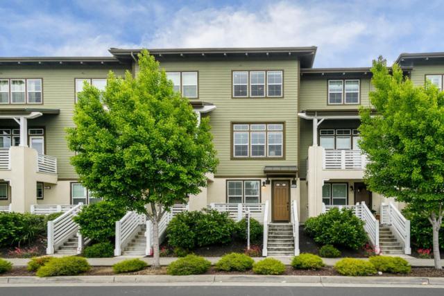 2872 Saratoga Dr, San Mateo, CA 94403 (#ML81750976) :: Strock Real Estate
