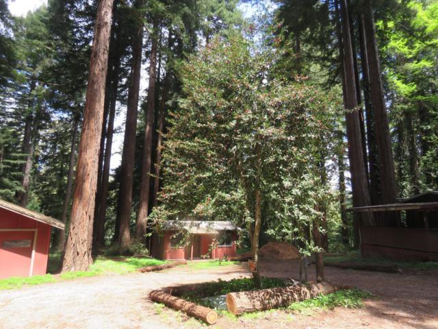 13070 Redwood Ave, Boulder Creek, CA 95006 (#ML81751279) :: The Gilmartin Group