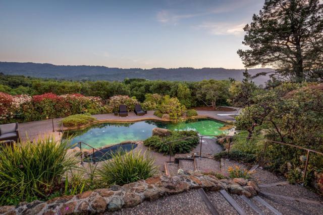 880 Westridge Dr, Portola Valley, CA 94028 (#ML81751601) :: Strock Real Estate