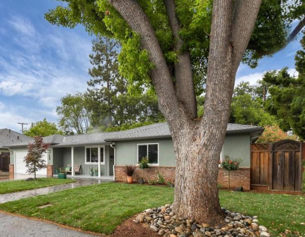 1356 Marilyn Dr, Mountain View, CA 94040 (#ML81752241) :: Maxreal Cupertino