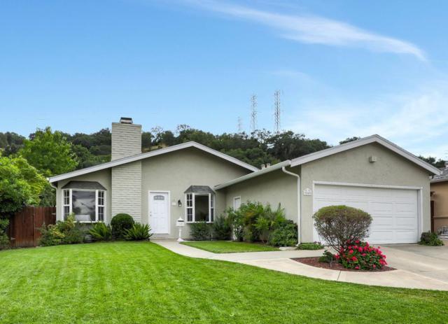 7049 Heaton Moor Dr, San Jose, CA 95119 (#ML81752455) :: Maxreal Cupertino
