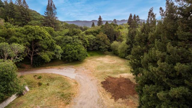 0 Alpine Rd, Portola Valley, CA 94028 (#ML81752468) :: Strock Real Estate