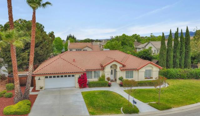 355 Linda Dr, Hollister, CA 95023 (#ML81752485) :: Strock Real Estate