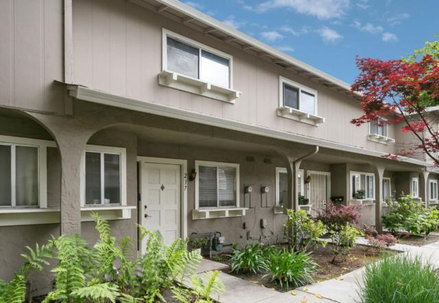 237 N Temple Dr, Milpitas, CA 95035 (#ML81752794) :: Maxreal Cupertino