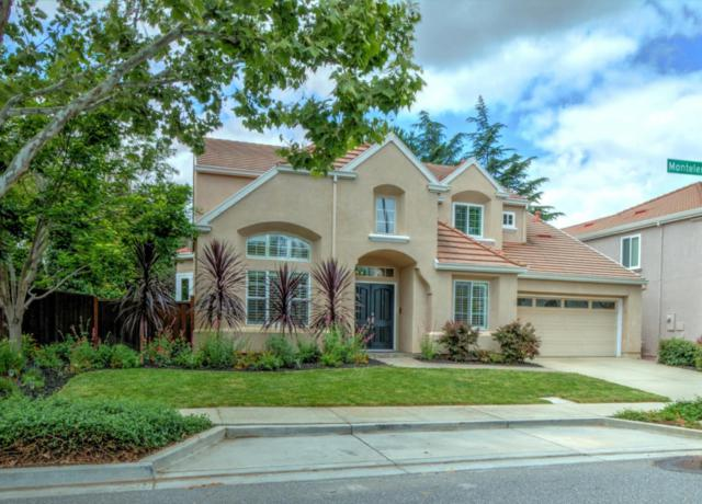 3219 Montelena Dr, San Jose, CA 95135 (#ML81752877) :: The Warfel Gardin Group