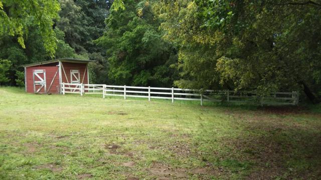 36 Grainger Ln, Santa Cruz, CA 95060 (#ML81753020) :: Keller Williams - The Rose Group