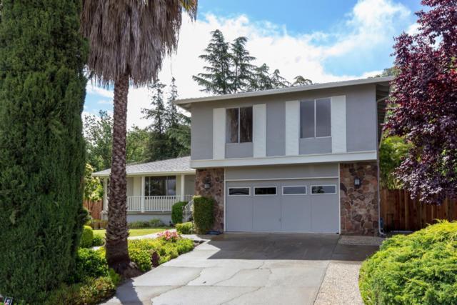 6210 Glendora Ct, San Jose, CA 95123 (#ML81753254) :: Keller Williams - The Rose Group
