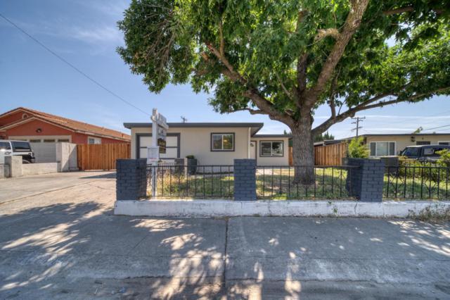 10141 Griffith St, San Jose, CA 95127 (#ML81753802) :: Keller Williams - The Rose Group
